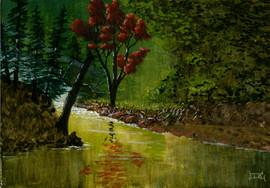 Audum Reflections