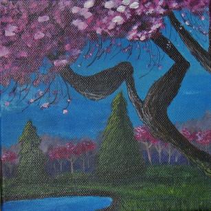 cherry tree in bloom 2.jpg