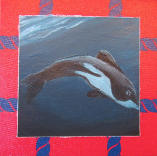 Howard's Dolphin
