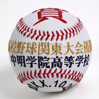order-made-baseball-hitomoji-softball2
