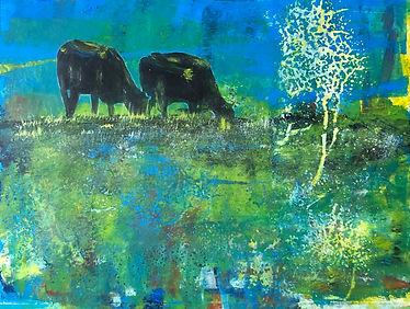 Kühe irgendwo.jpg