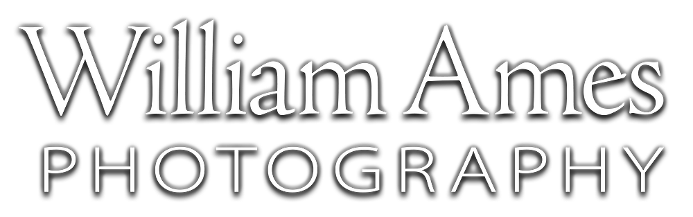 William Ames Photography