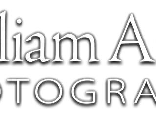 Wedding Pro Wednesday - William Ames Photography