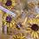 Thumbnail: Hundreds of Stars Coaster