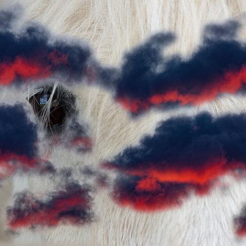 red clouds war pony