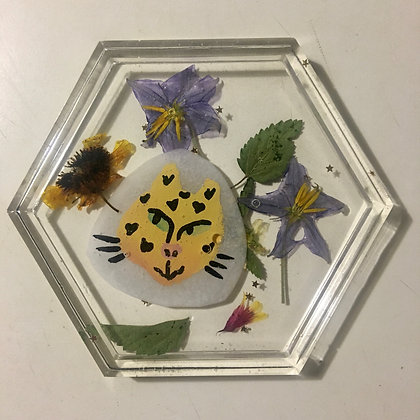Floral Spots Coaster