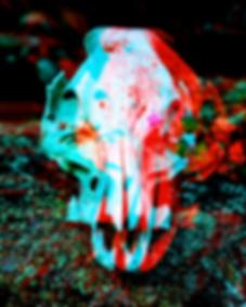 flower+skull.png
