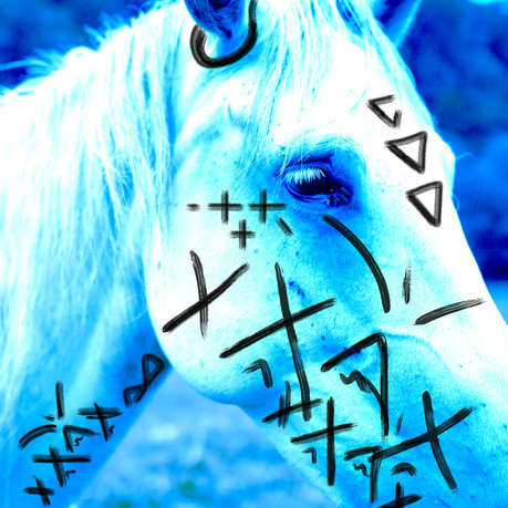 horseplay 1