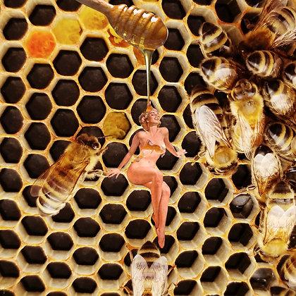 Oh Honey Honey