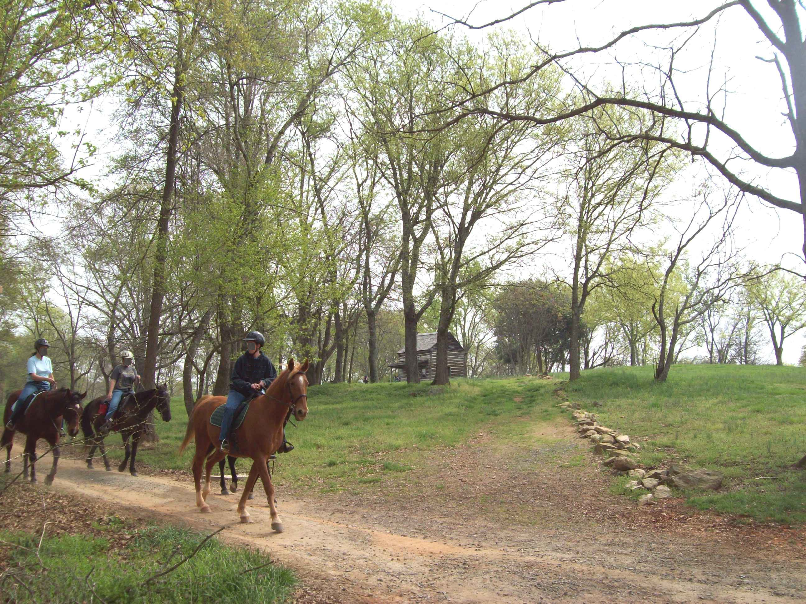 RidingHorses on the Greenway.jpg