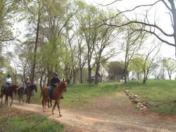 RidingHorses on the Greenway.jpg