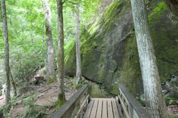 trail 7.jpg