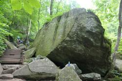 trail 5.jpg