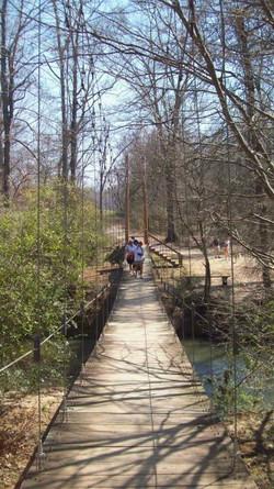 Greenway Trails.jpg