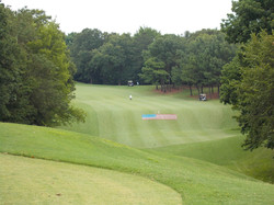 golf course with flag.jpg