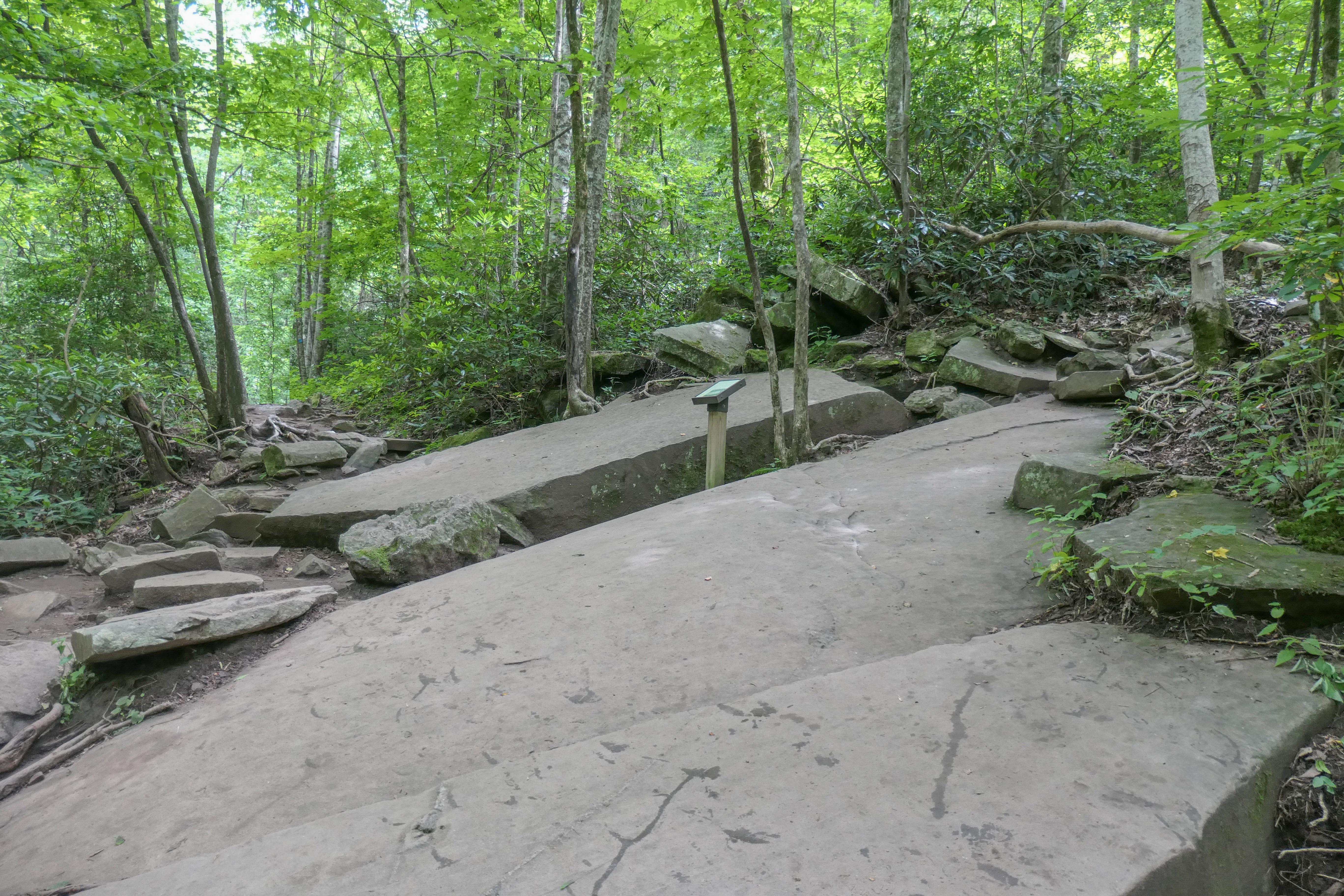 trail 4 a.jpg