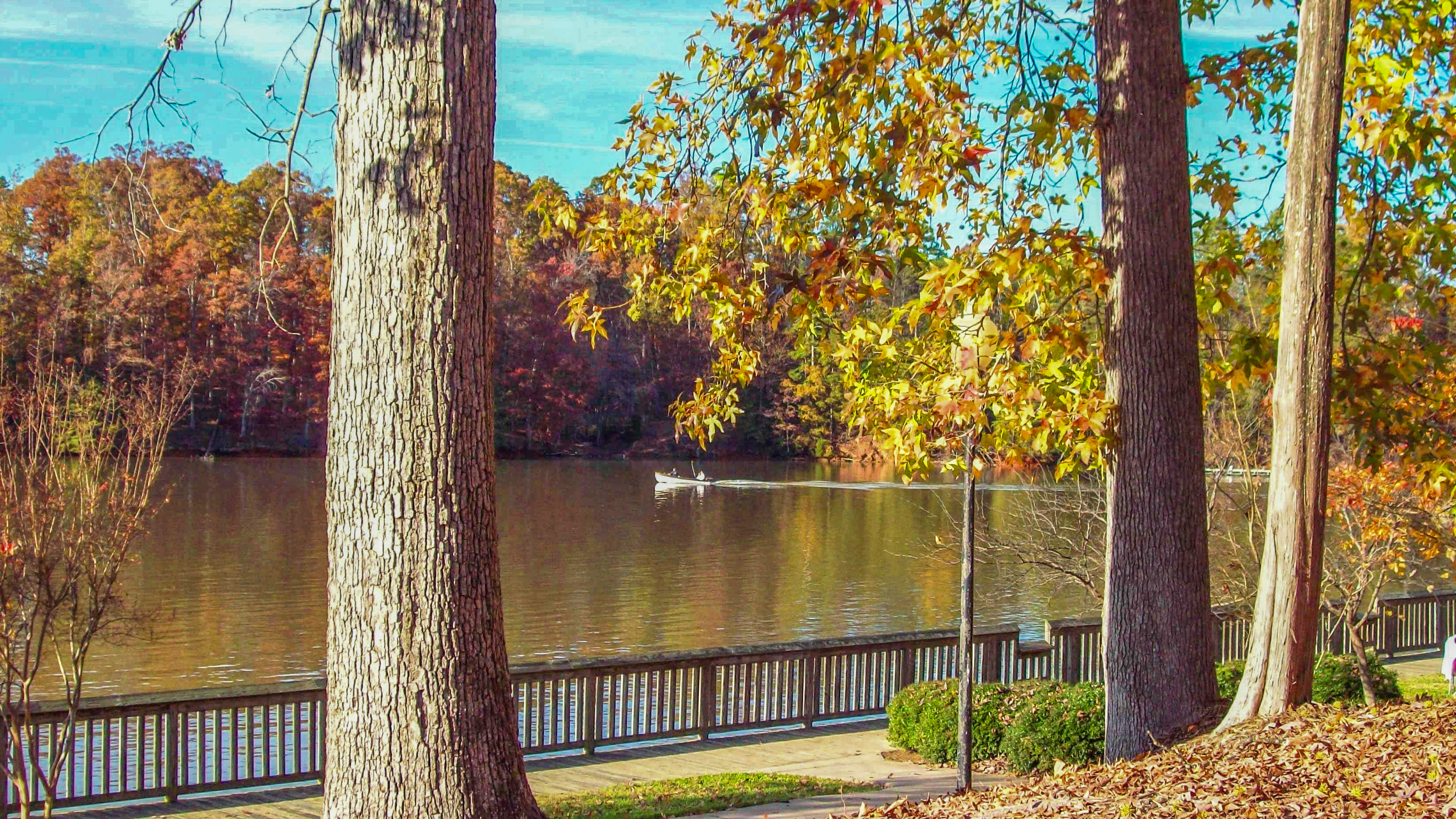 McDowell Park Lake View.jpg