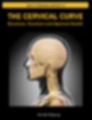 upper cervical chiropractor boca raton, upper cervical boca, east boca chiropractor, specific chiropractor