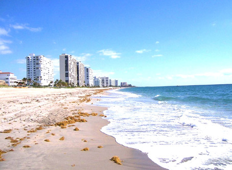 Holistic Doctor | Natural Doctor | Near Me | Boca Raton