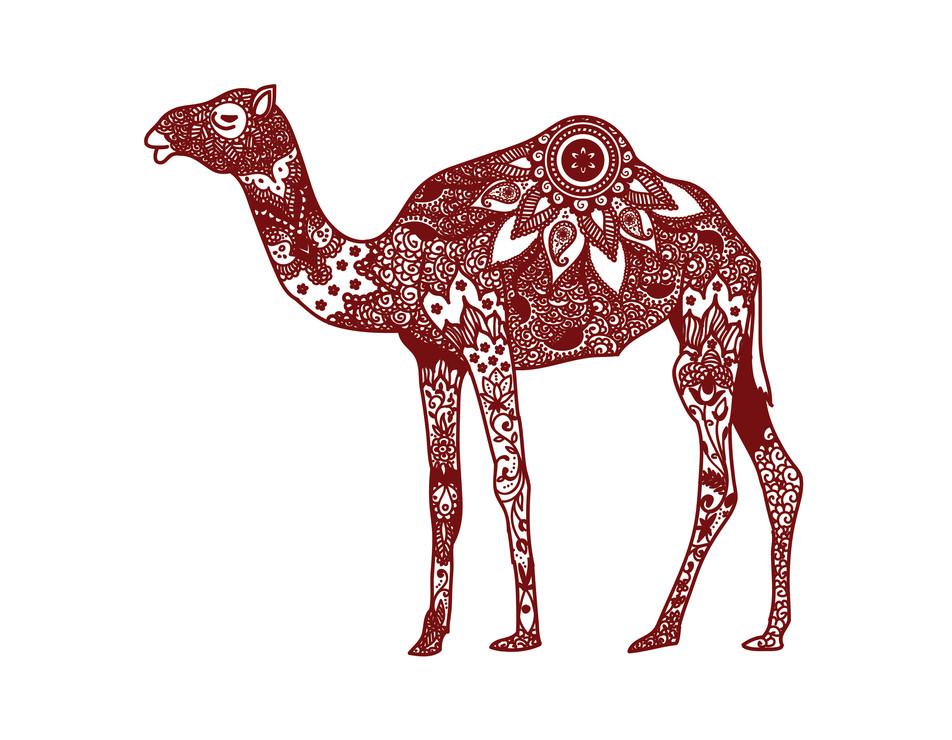 henna Camel-01.jpg