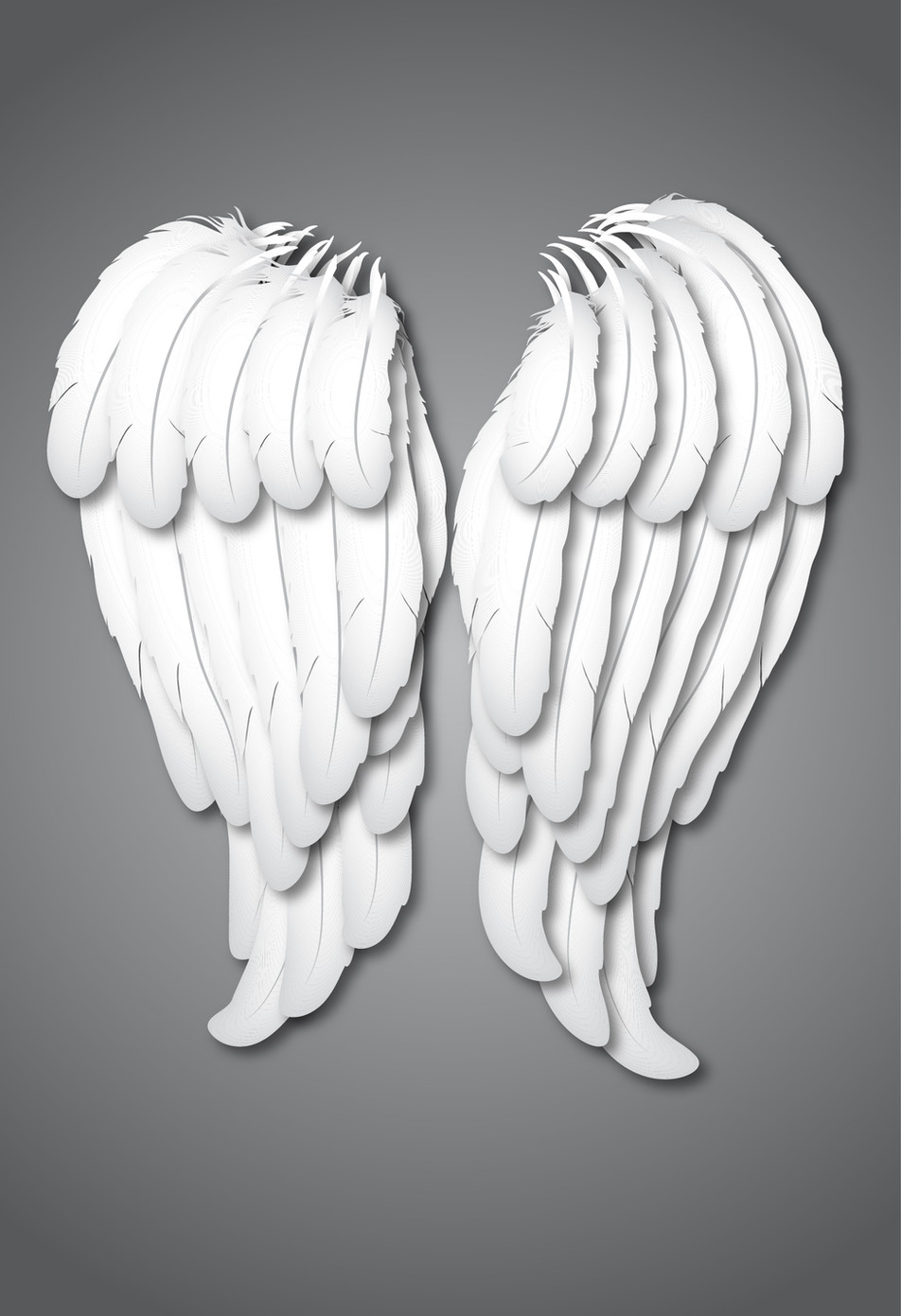 Feathers-02.jpg