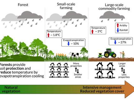 Agricultura em grande escala na Amazônia acelera mudanças climáticas