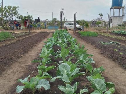 Empaer auxilia comunidade Xavante no manuseio de horta para subsistência