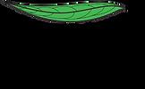 logo SHPR.tif