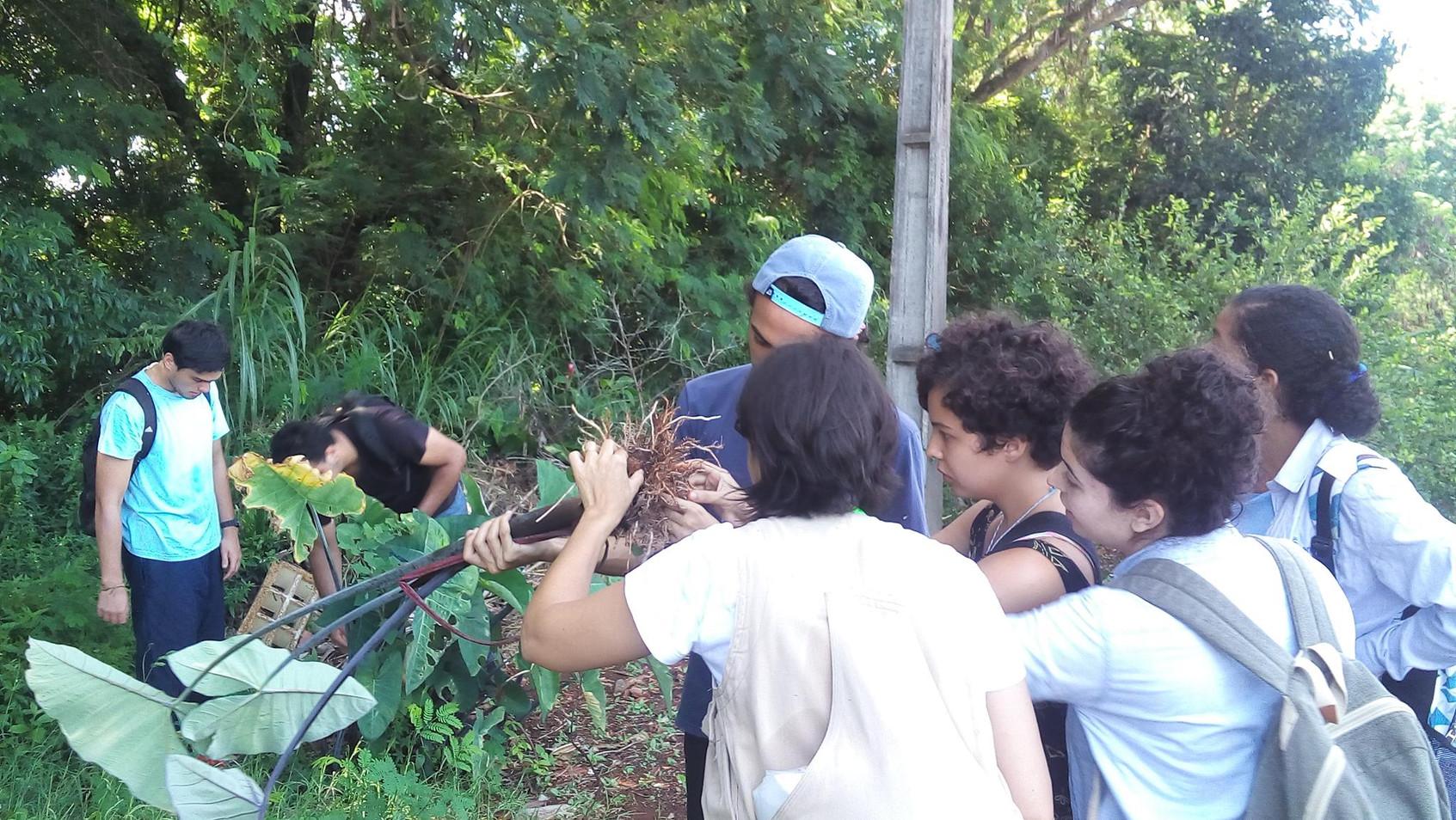 ColetacomaTurmaGraduação_Foto_ABarbosa (
