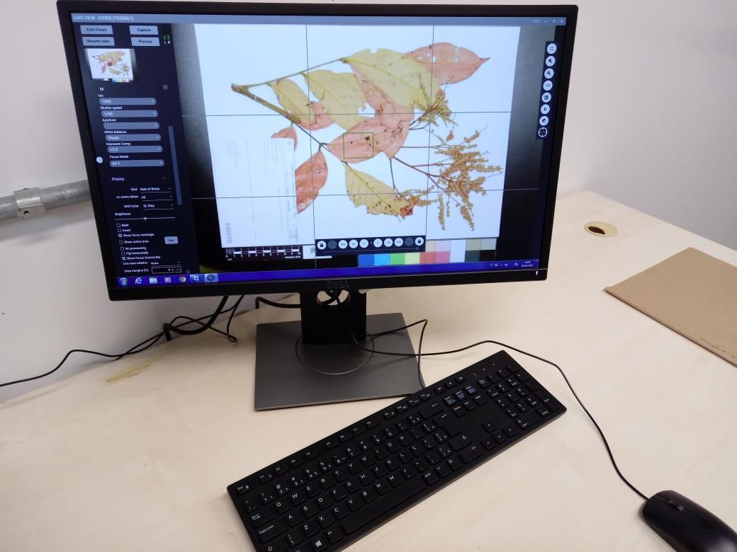 Digitalização1_Foto_C.Andreazza (1).jpeg