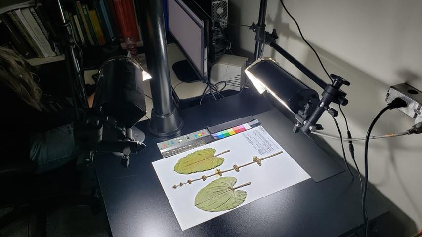 mesa digitalizadora.jpeg