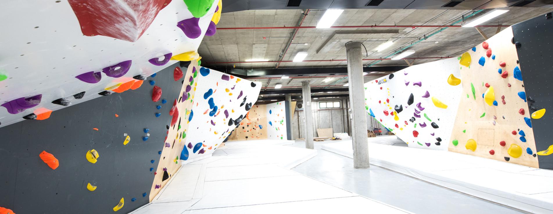monkeys climbing gym - קיר טיפוס מאנקיז
