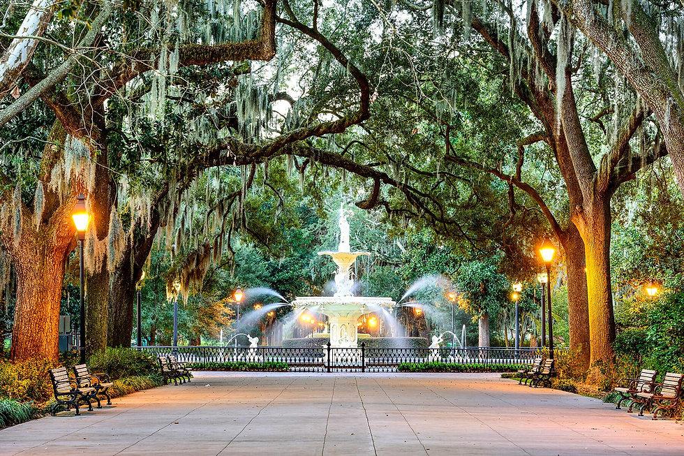 Savannah fountain Cover Photo.jpg