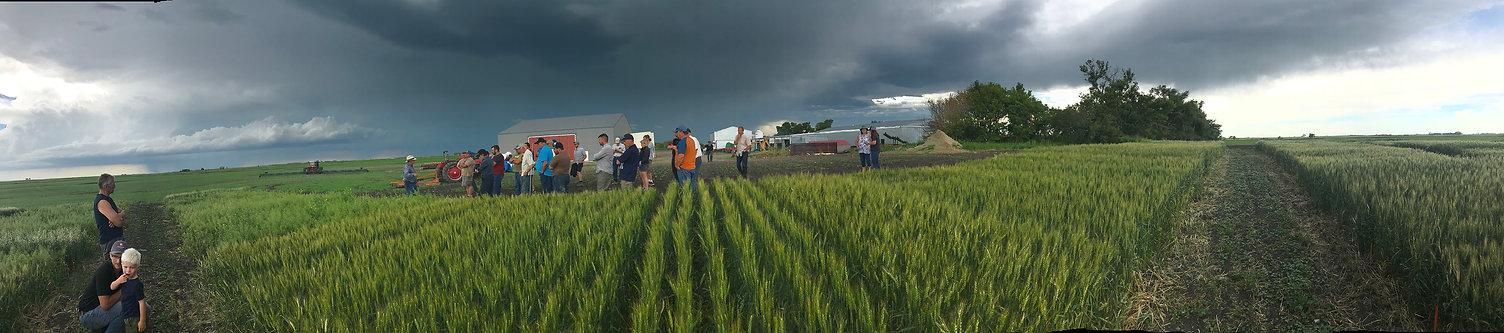 2020 Rourke Farm panoramic sm.jpg