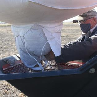 Glenn Elliott augering wheat seed into the seeder