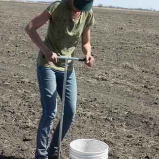 Anne Kirk collecting soil for samples at the Elliott's