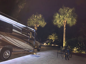 1 hilton head palms at night.jpg