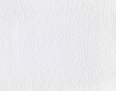 White-Leather.jpg