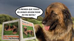 Cuidar do Cão da Serra da Estrela