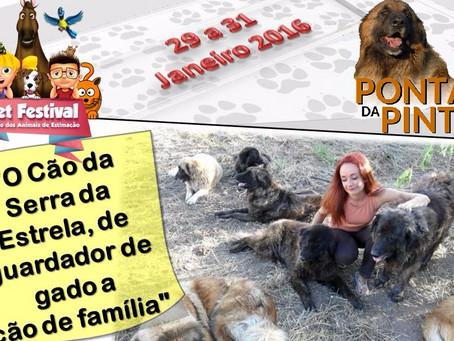 A Ponta da Pinta no Pet Festival