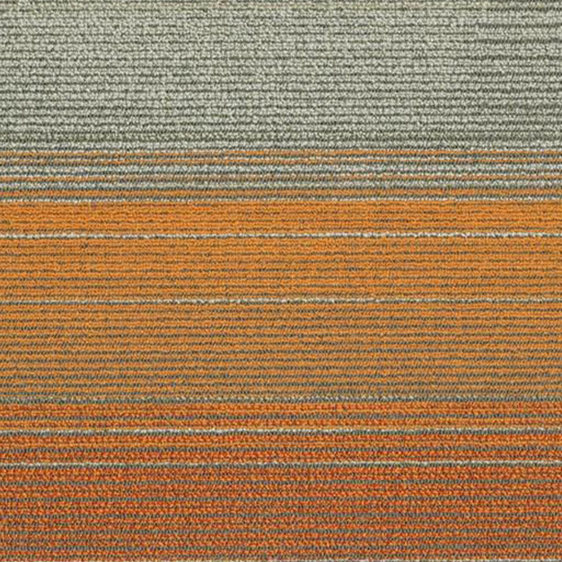 Carpet_1.jpg