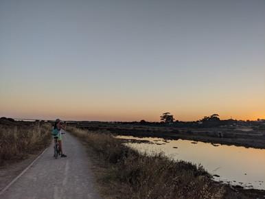 Cyclepath to the beach