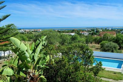 Views and pool