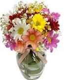 Flores do campo no vaso de vidro pequeno