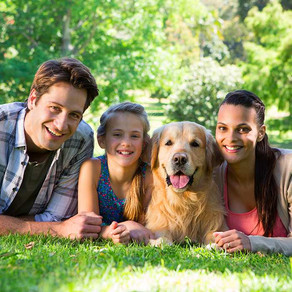 Family: living with dogs, the relationship between kids and dogs and its benefits