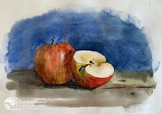 этюд яблок. школа лесова