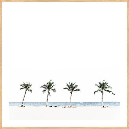 Four Palm Framed Print