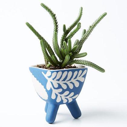 Mini Indigo Planter