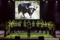 Alphorn in concert Oensingen 2015