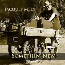 Jacques Mees Something New.jpg